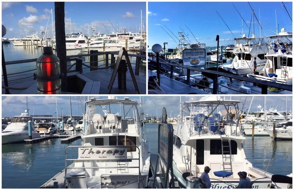 Galleon Marina - Key West Establishment