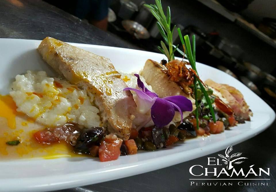 El Chaman Peruvian Restaurant - Tamiami Webpagedepot