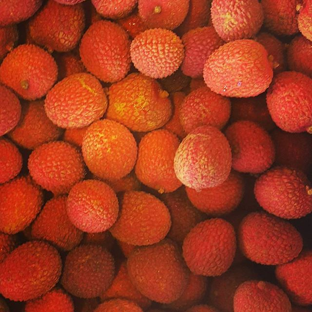 Excellent Fruit & Produce - Miami Webpagedepot
