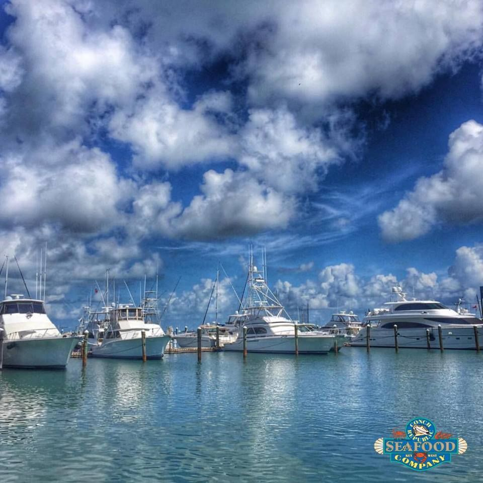 Conch Republic Seafood Company - Key West Webpagedepot
