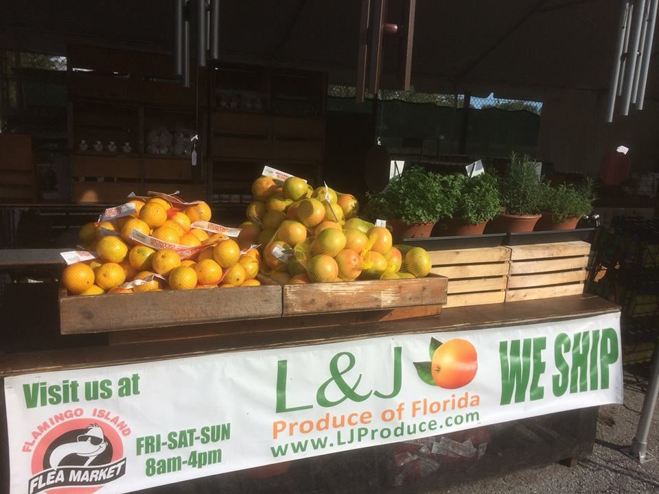 L&J Produce of Florida - Bonita Springs Accommodate