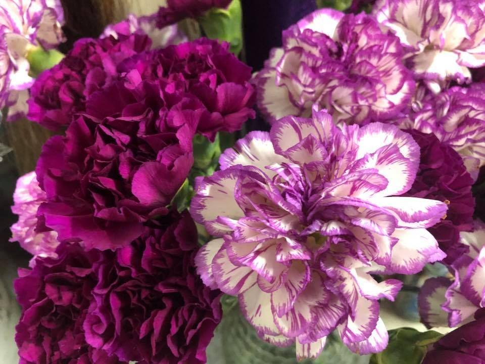 Botanica San Lazaro Flowers - Hialeah Placholders