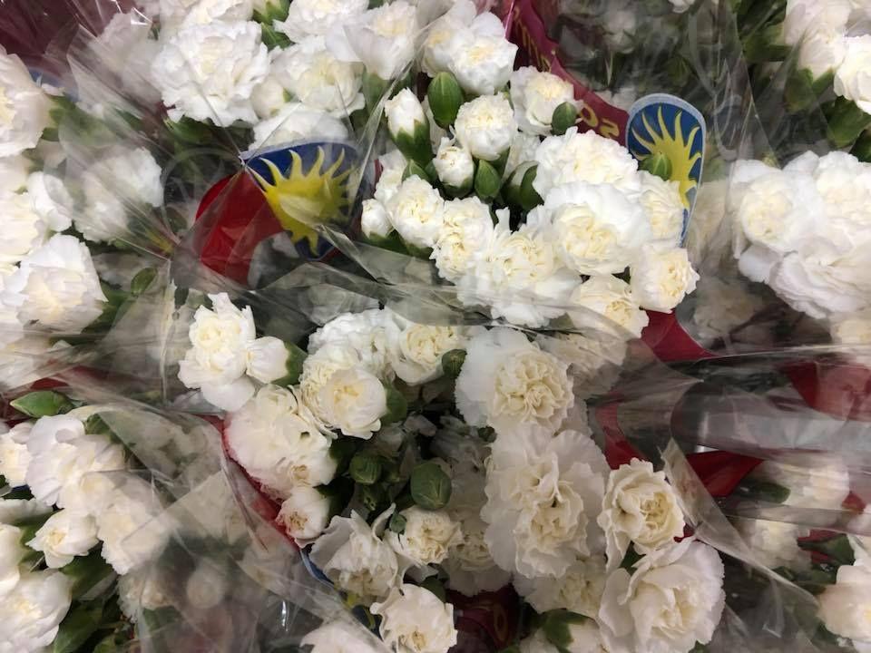 Botanica San Lazaro Flowers - Hialeah Informative