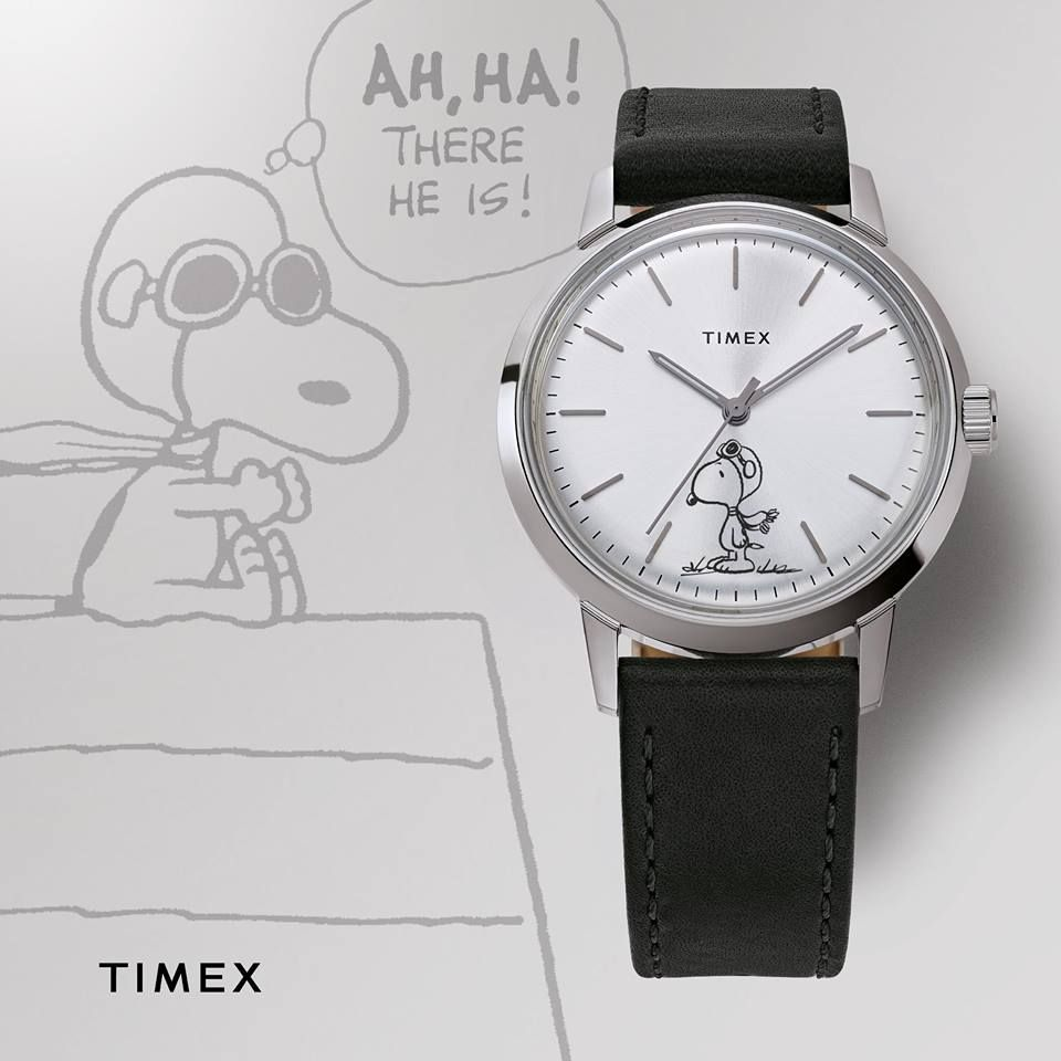 Timex Factory Outlet - Orlando Regulations