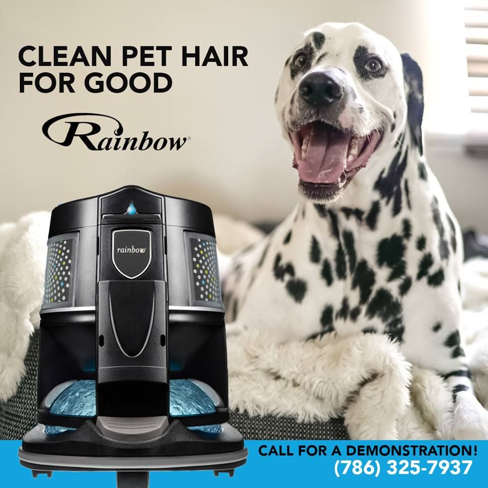 Rainbow Vacuum Cleaners Miami - Tamiami Webpagedepot