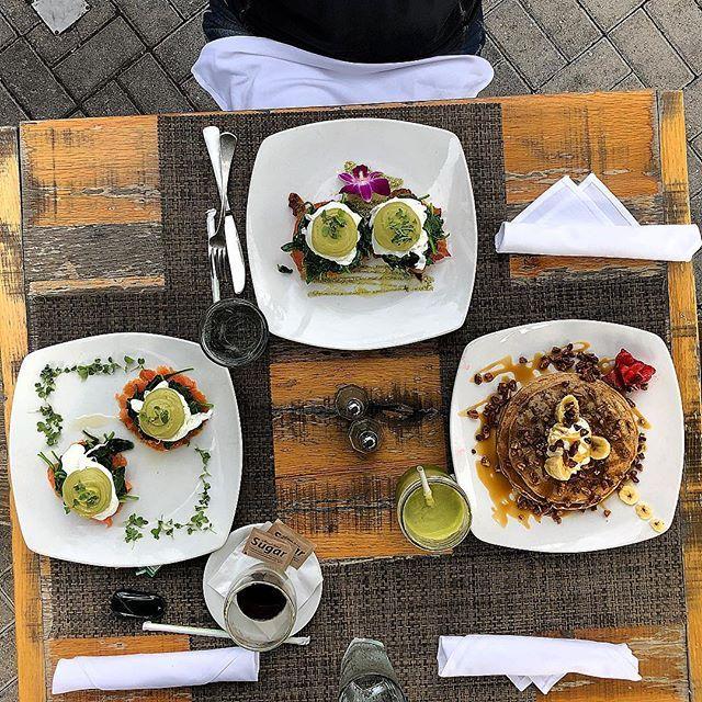Organic Bites - Miami Webpagedepot