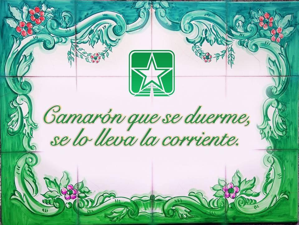 Estrella Insurance #115 - Hialeah Webpagedepot