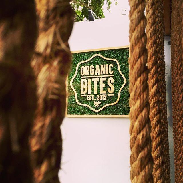 Organic Bites - Miami Informative