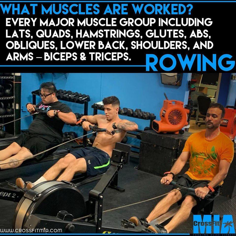 CrossFit MIA Informative