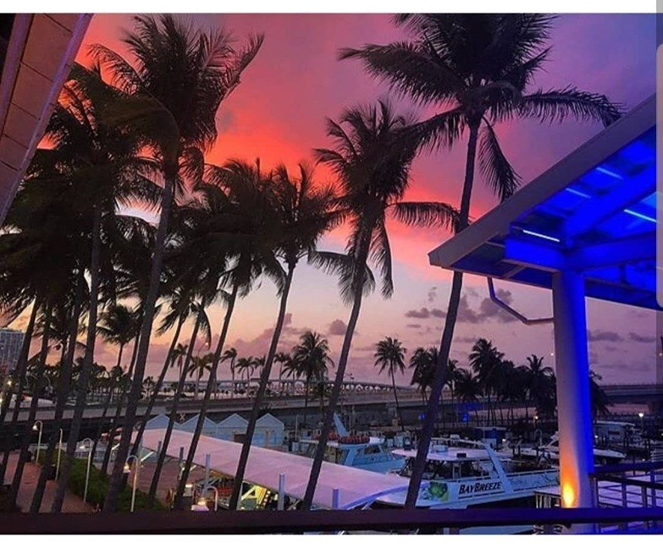Bayside Marketplace - Miami Organization