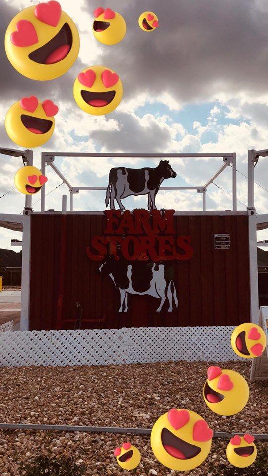 Farm Stores - Hialeah Appearance