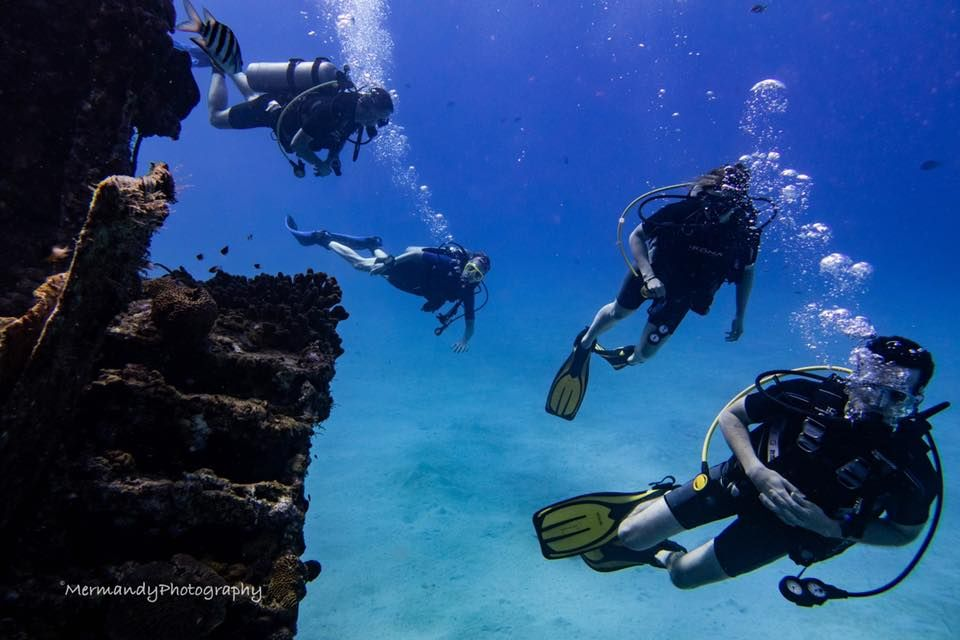 Adventures in Diving STX - St Croix Affordability