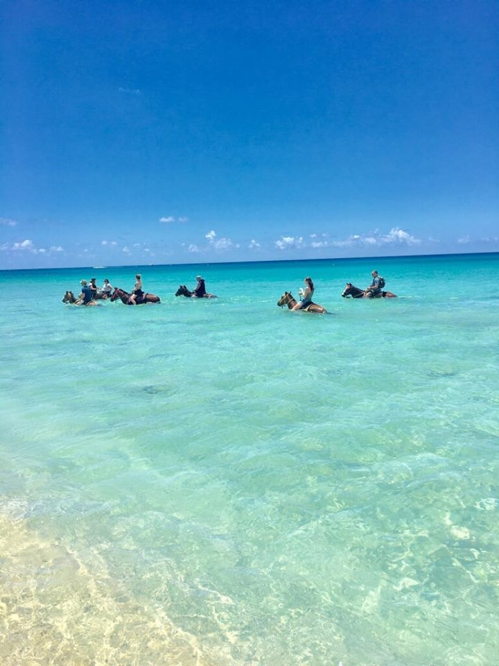 Cruzan Cowgirls - St Croix Convenience