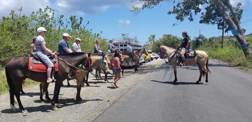 Cruzan Cowgirls - St Croix Informative
