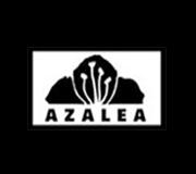 Azalea - New York Azalea - New York, Azalea - New York, 224 W 51st St, New York, NY, , Italian restaurant, Restaurant - Italian, pasta, spaghetti, lasagna, pizza, , Restaurant, Italian, burger, noodle, Chinese, sushi, steak, coffee, espresso, latte, cuppa, flat white, pizza, sauce, tomato, fries, sandwich, chicken, fried