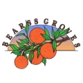 Bearss Groves, LLC - Tampa Bearss Groves, LLC - Tampa, Bearss Groves, LLC - Tampa, 14316 Lake Magdalene Blvd, Tampa, FL, , Fruit store, Retail - Fruit, citrus, vegetables, fruit, juice, , shopping, Shopping, Stores, Store, Retail Construction Supply, Retail Party, Retail Food