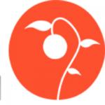 IL Pom Italian Fed Square - Melbourne, IL Pom Italian Fed Square - Melbourne, IL Pom Italian Fed Square - Melbourne, 2 Swanston St, Melbourne, Victoria, , Italian restaurant, Restaurant - Italian, pasta, spaghetti, lasagna, pizza, , Restaurant, Italian, burger, noodle, Chinese, sushi, steak, coffee, espresso, latte, cuppa, flat white, pizza, sauce, tomato, fries, sandwich, chicken, fried