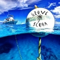 Grove Scuba - Miami Grove Scuba - Miami, Grove Scuba - Miami, 2809 SW 27th Ave,, Miami, FL, , Water sport, Activity - Swim Scuba Dive, Scuba, Scuba Dive, Swim, dive, , Activity Swim Scuba Dive, animal, fishing, spearing, spear, trap, crab, shopping, sport, travel, Activities, fishing, skiing, flying, ballooning, swimming, golfing, shooting, hiking, racing, golfing