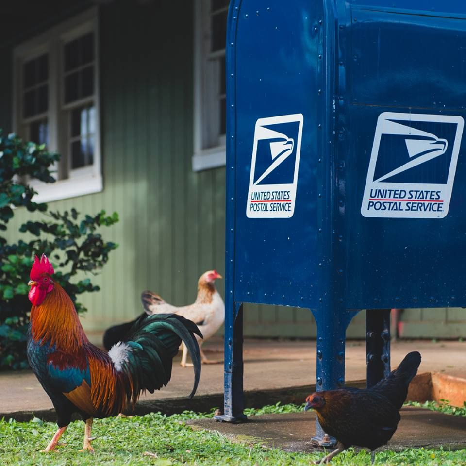 United States Postal Service - St Croix Regulations