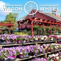 Wagon Wheel Wagon Wheel, Wagon Wheel, 927 Waltham St, Lexington, MA, , florist, Retail - Florist, flowers, plants, outdoor, indoor, , shopping, Shopping, Stores, Store, Retail Construction Supply, Retail Party, Retail Food