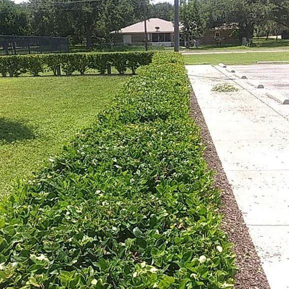 Hernandez Landscaping Accommodate