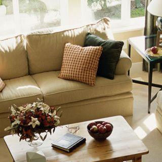 Newman Furniture of Elgin Mattresses