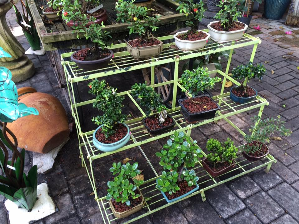 Delray Garden Center - Delray Beach Landscaping