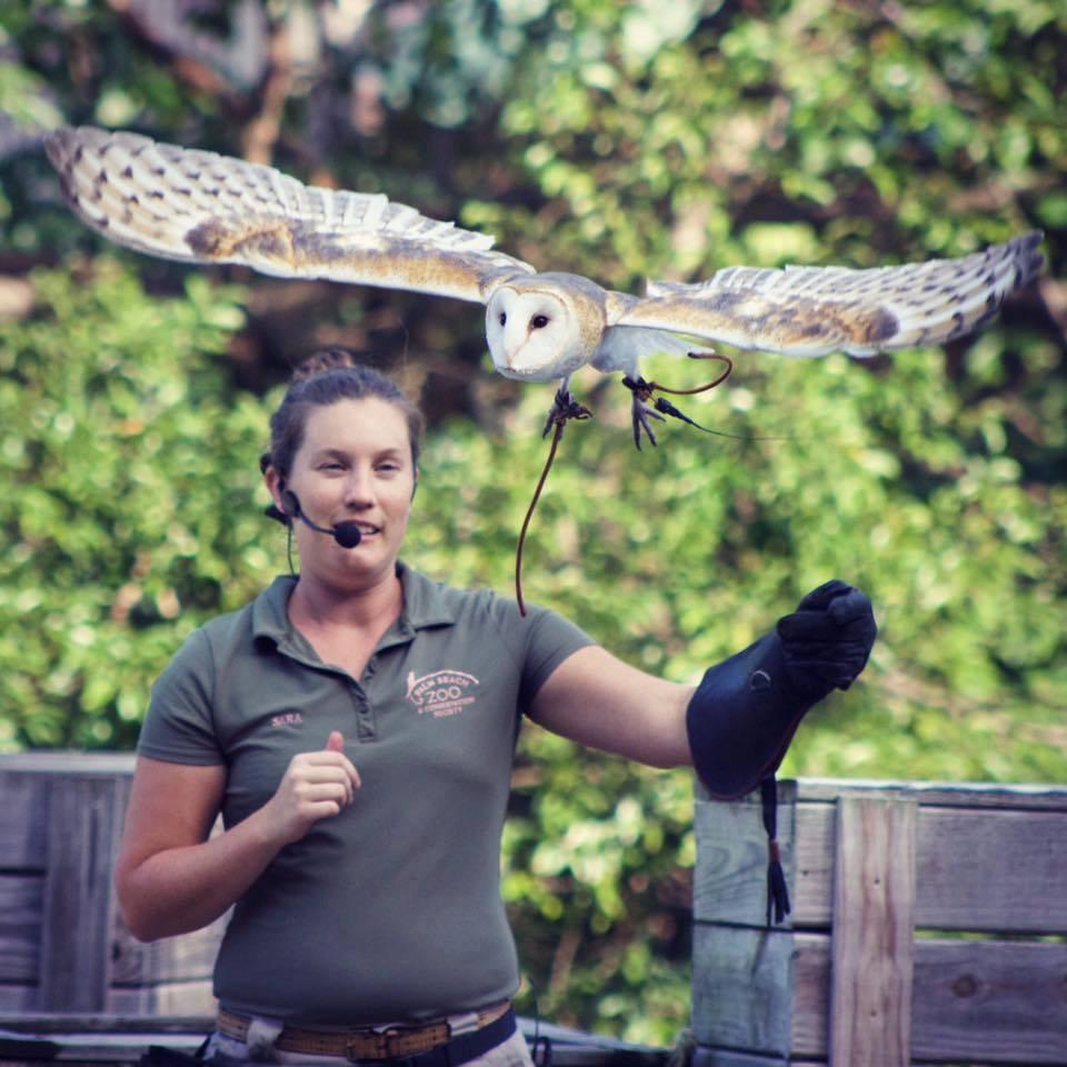 Palm Beach Zoo & Conservation Society - West Palm Beach Documentation