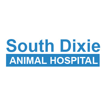 South Dixie Animal Hospital Positively