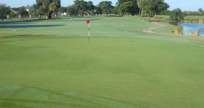 Boca Raton Municipal Golf Course Thumbnails