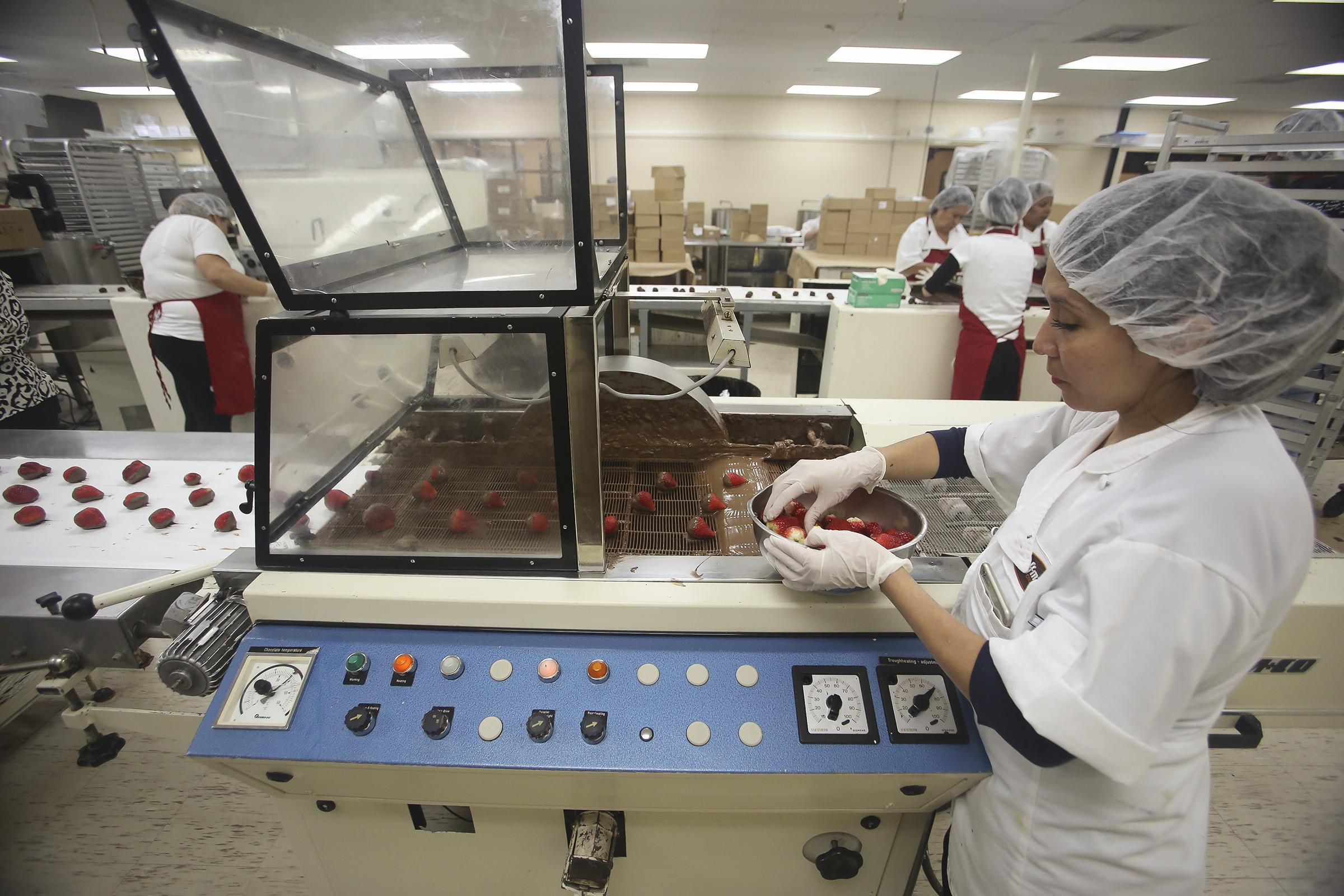 Hoffman's Chocolate packaging