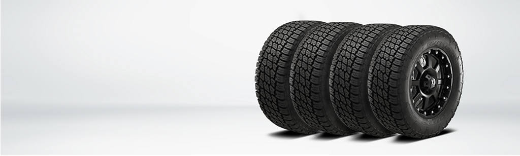 Tire Kingdom Webpagedepot