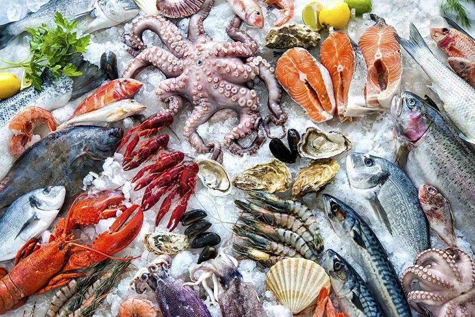 A Fish Called Avalon - Miami Beach Contemporary