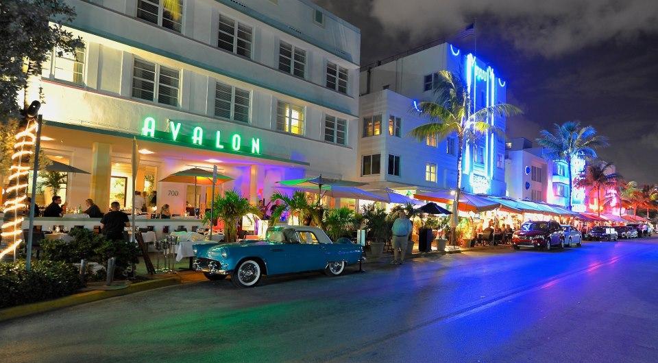 A Fish Called Avalon - Miami Beach Surroundings