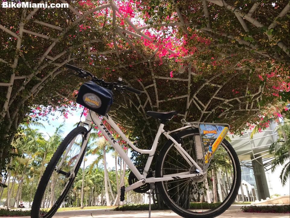 Bike and Roll Miami-Miami Beach Miami-miami