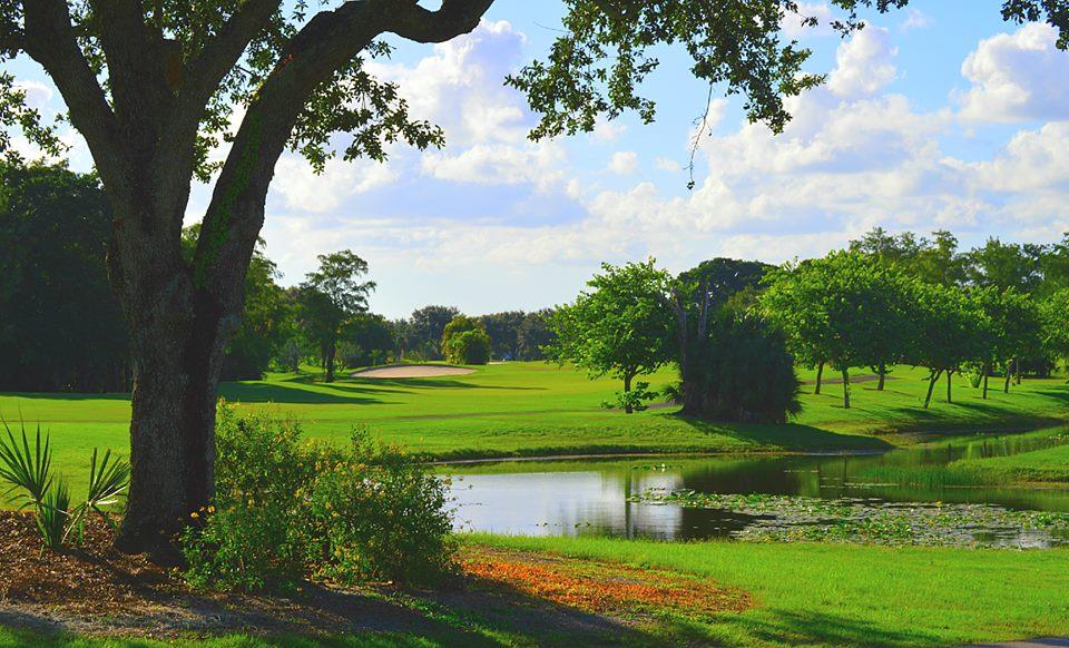 Village Golf Club Informative