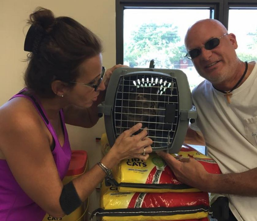 Animal Rescue Force of South Florida - West Palm Beach Accommodate