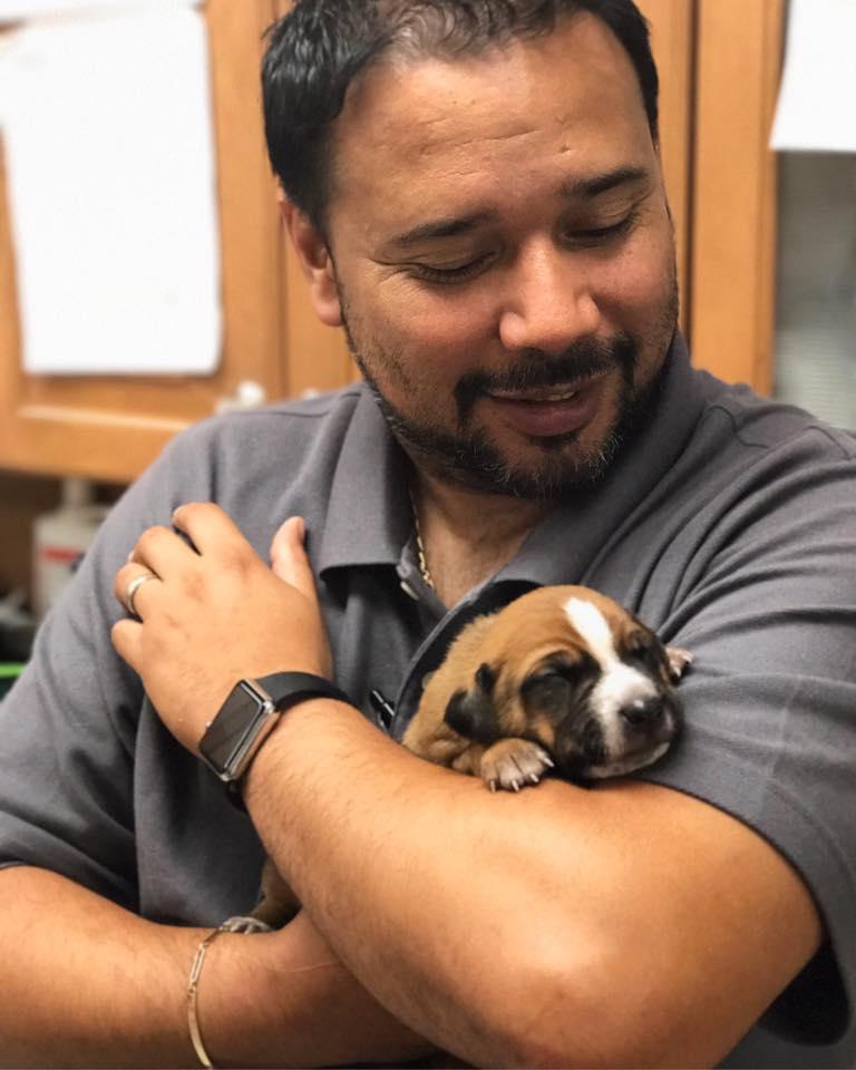 Clint Moore Animal Hospital - Boca Raton Regulations