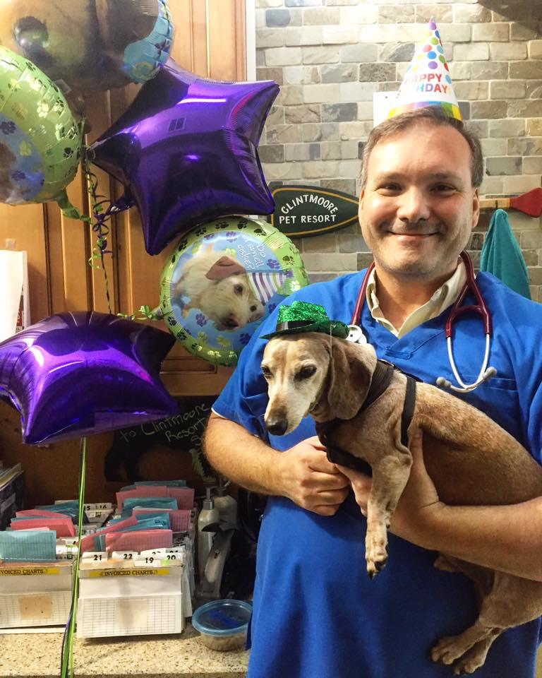 Clint Moore Animal Hospital - Boca Raton Webpagedepot