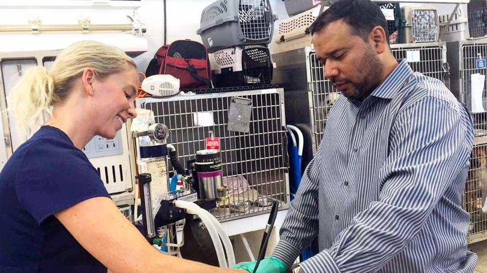 Clint Moore Animal Hospital - Boca Raton Professionals