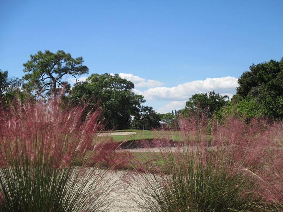Evergreen Golf Club - Palm City Webpagedepot