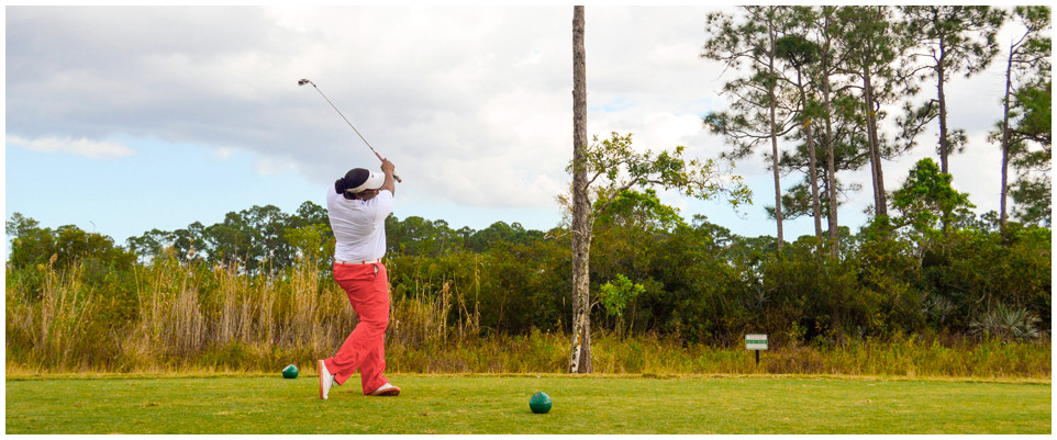 Sandhill Crane Golf Club - Palm Beach Gardens Themselves