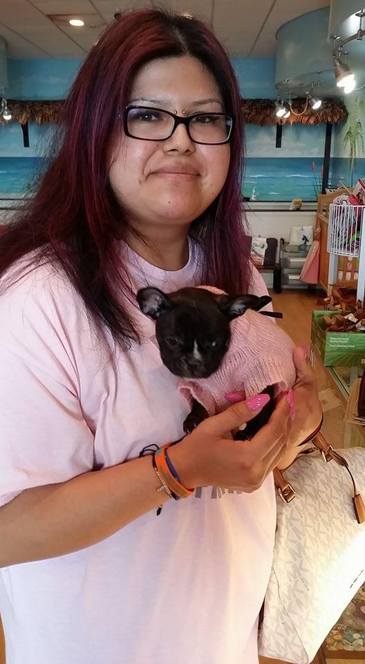 Palm Beach Puppies - Boca Raton Especially
