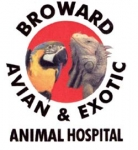 Broward Avian & Exotic Animal Hospital - Deerfield Beach Broward Avian & Exotic Animal Hospital - Deerfield Beach, Broward Avian and Exotic Animal Hospital - Deerfield Beach, 1101 South Powerline Road, Deerfield Beach, Florida, Broward County, Veterinarian, Medical - Veterinary, animal care, pet care, , cat, dog, kitten, rat, mice, snake, horse, pig, animal, disease, sick, heal, test, biopsy, cancer, diabetes, wound, broken, bones, organs, foot, back, eye, ear nose throat, pancreas, teeth