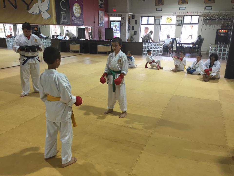 Harmony Martial Arts Center - Jupiter Questions