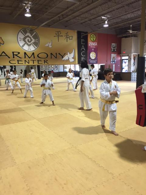 Harmony Martial Arts Center - Jupiter Information