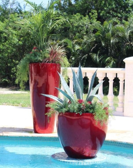 The Pottery Patch - West Palm Beach Improvement