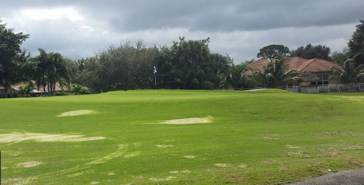 Lakeview Golf Club - Delray Beach Atmosphere