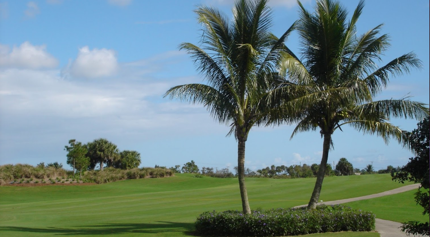 Polo Trace Golf Club - Delray Beach Information