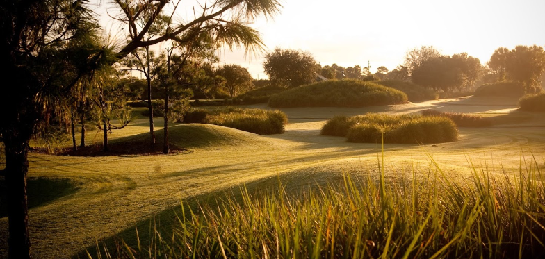 Polo Trace Golf Club - Delray Beach Positively